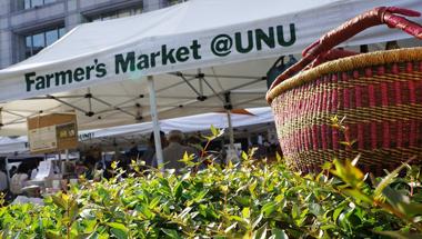 9月4日(日) Farmer's Market@UNU 出店