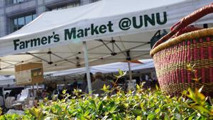 8月27日(土)・28日(日) Farmer's Market@UNU 出店