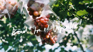 10月22日(土)23日(日) 第10回 青山パン祭り – Bread! Fruit! Vegetable! 出店