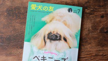犬の総合情報雑誌『愛犬の友』に掲載されました!